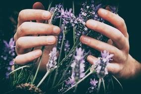 essential-oil-lavender