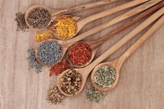 holistic-healing-herbs